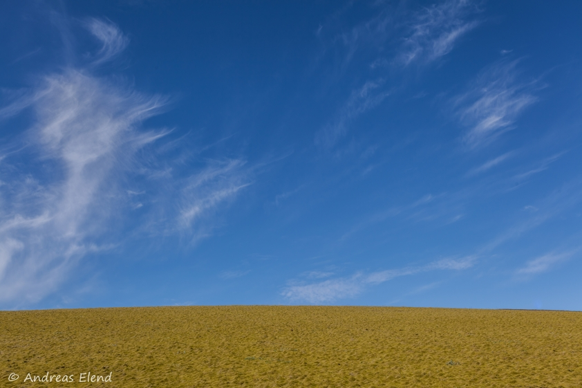 Landschaft in Blau-Grün